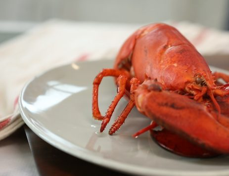 DIY Video Guide: How to Cook Lobster at Home
